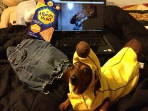 Banana weenie dog